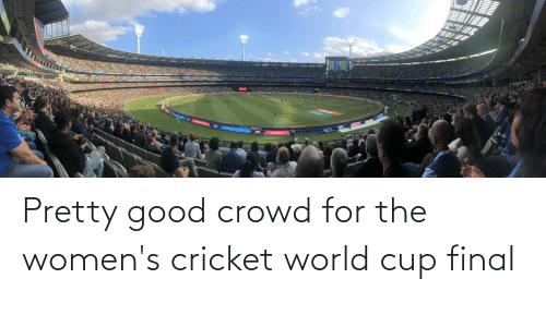 cricket world cup: Pretty good crowd for the women's cricket world cup final