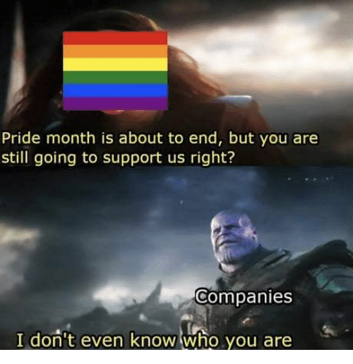 Who, Pride, and You: Pride month is about to end, but you are  still going to support us right?  Companies  I don't even know who you are