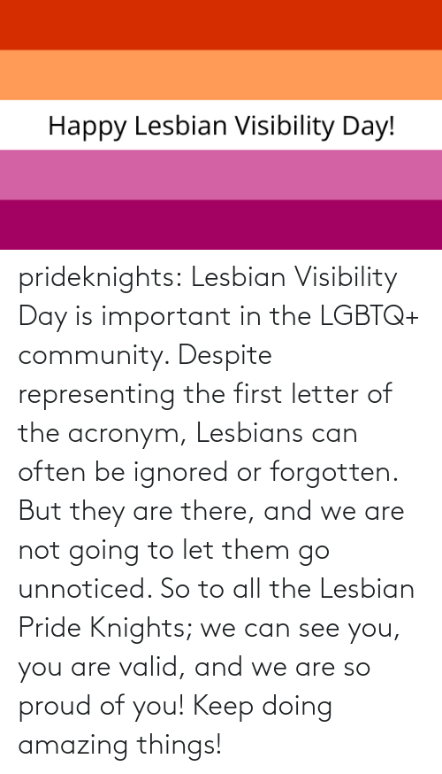 Proud Of You: prideknights:  Lesbian Visibility Day is important in the LGBTQ+ community. Despite representing the first letter of the acronym, Lesbians can often be ignored or forgotten. But they are there, and we are not going to let them go unnoticed. So to all the Lesbian Pride Knights; we can see you, you are valid, and we are so proud of you! Keep doing amazing things!