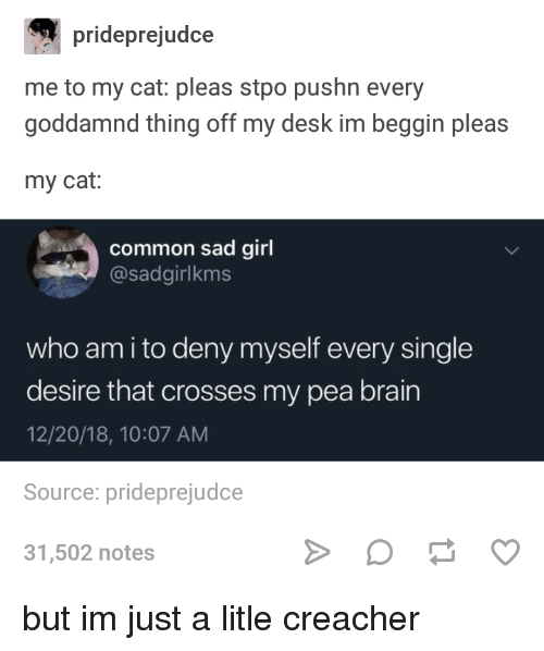 Who Am I, Brain, and Common: prideprejudce  me to my cat: pleas stpo pushn every  goddamnd thing off my desk im beggin pleas  my cat:  common sad girl  @sadgirlkms  who am i to deny myself every single  desire that crosses my pea brain  12/20/18, 10:07 AM  Source: prideprejudce  31,502 notes but im just a litle creacher