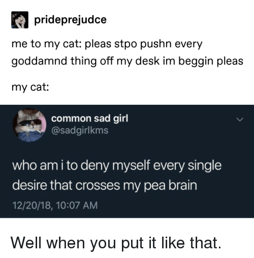 Who Am I, Brain, and Common: prideprejudce  me to my cat: pleas stpo pushn every  goddamnd thing off my desk im beggin pleas  my cat:  common sad girl  @sadgirlkms  who am i to deny myself every single  desire that crosses my pea brain  12/20/18, 10:07 AM Well when you put it like that.