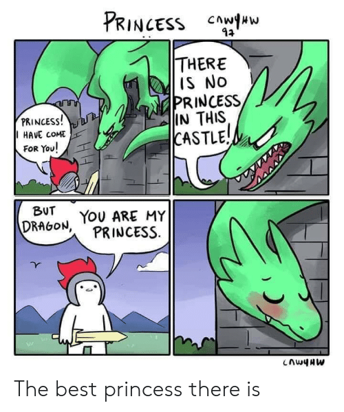 Best, Princess, and Castle: PRINCESS Cww  THERE  IS No  PRINCESS,  IN THIS  |CASTLE  PRINCESS!  HAVE COME  FOR You!  BUT  DRAGON, YOU ARE MY  PRINCESS The best princess there is