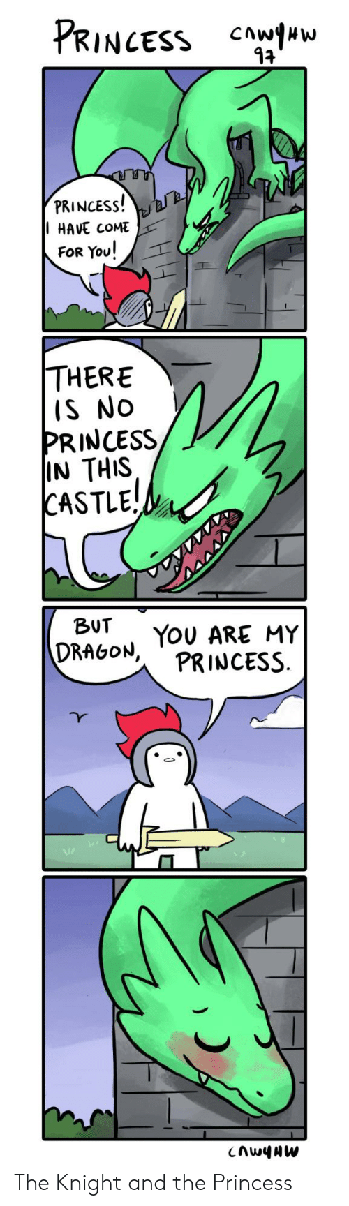 Princess, Castle, and Dragon: PRINCESS  PRINCESS!  HAVE COME  FOR You!  THERE  IS NO  PRINCESS  IN THIS  CASTLE!  BUT  DRAGON, TOU ARE MY  PRINCESS  CnwyAW The Knight and the Princess