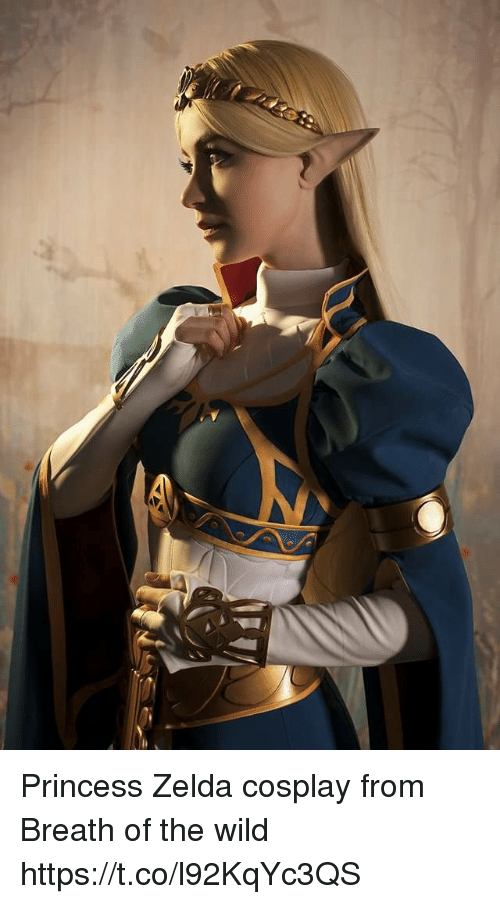 Cosplay, Princess, and Wild: Princess Zelda cosplay from Breath of the wild https://t.co/l92KqYc3QS