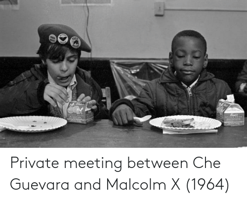 che: Private meeting between Che Guevara and Malcolm X (1964)