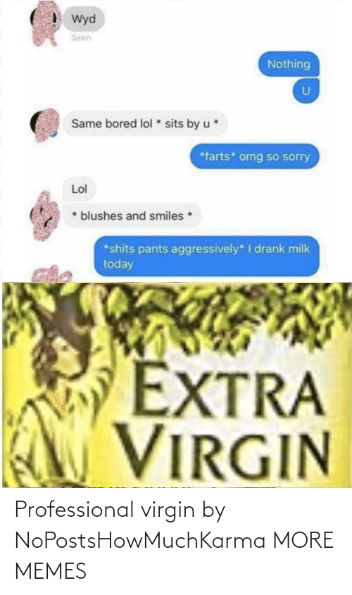 Virgin: Professional virgin by NoPostsHowMuchKarma MORE MEMES