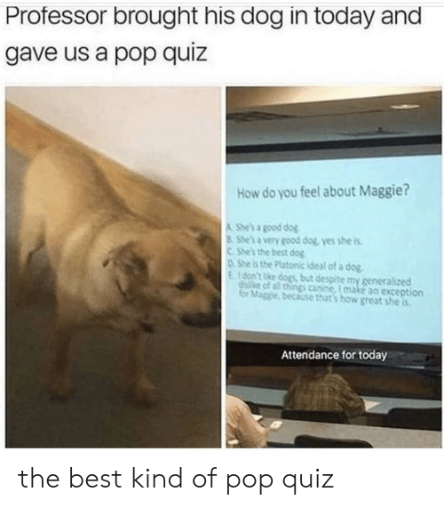 Exception: Professor brought his dog in today and  gave us a pop quiz  How do you feel about Maggie?  A She's a good dog  8 She's a very good dog, yes she is  CShe's the best dog  DShe is the Platonic ideal of a dog.  E16on't ke dogs but despite my generalized  disike of all things canine, I make an exception  for Maggie, because that's how great she is  Attendance for today the best kind of pop quiz