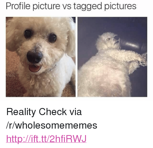 "reality check: Profile picture vs tagged pictures <p>Reality Check via /r/wholesomememes <a href=""http://ift.tt/2hfiRWJ"">http://ift.tt/2hfiRWJ</a></p>"