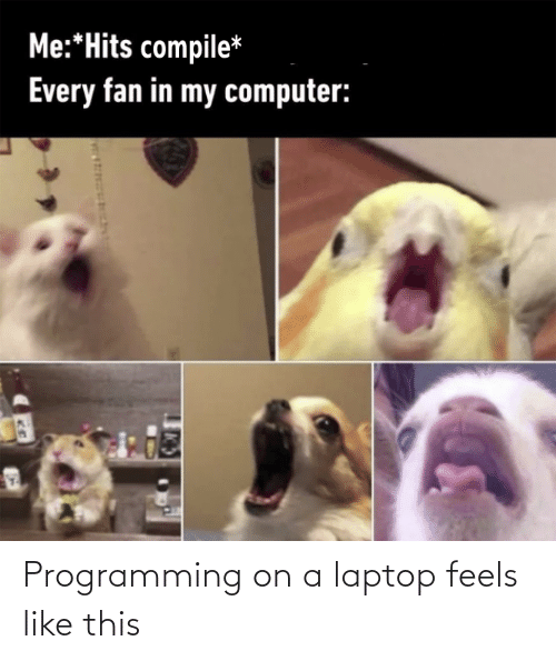 feels: Programming on a laptop feels like this