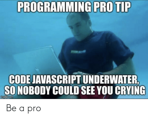 Crying, Pro, and Programming: PROGRAMMING PRO TIP  CODE JAVASCRIPT UNDERWATER,  SO NOBODY COULD SEE YOU CRYING  imgf p.com Be a pro