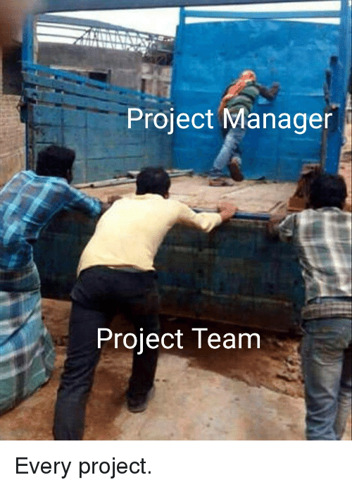 project manager: Project Manager  Project Team Every project.