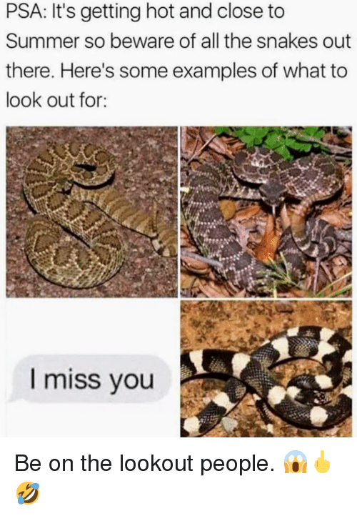 Summer, Lookout, and Snakes: PSA: It's getting hot and close to  Summer so beware of all the snakes out  there. Here's some examples of what to  look out for:  I miss vou <p>Be on the lookout people. 😱🖕🤣 </p>