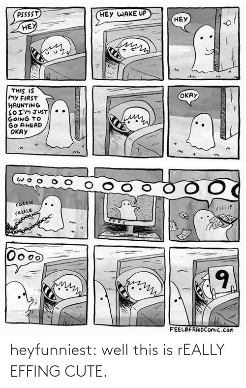 hey wake up: PSSSST  HEY WAKE UP  HEY  НЕЎ  THIS IS  My FIRST  HAUNTING  SOIMJUST  GOING TO  Go AHEAD  ОКАУ  ОКАУ  Wwww   O O  Cattle  (attle  riiiip  Ass  Oo  9  FEELAFRAIDCOMIC.com heyfunniest:  well this is rEALLY EFFING CUTE.