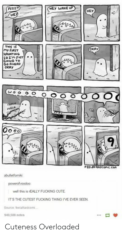 hey wake up: PSSSST  HEY WAKE UP  HEY  HE  THIS IS  MY FIRST  HAUNTING  OKAy  GOING TO  Go AHEAD  OKAy  ns  9  FEELAFRAiDConic.con  abulletfomiki  well this is rEALLY FUCKING CUTE  ITS THE CUTEST FUCKING THING I'VE EVER SEEN  Source: feelafraidcomi  940,508 notes Cuteness Overloaded