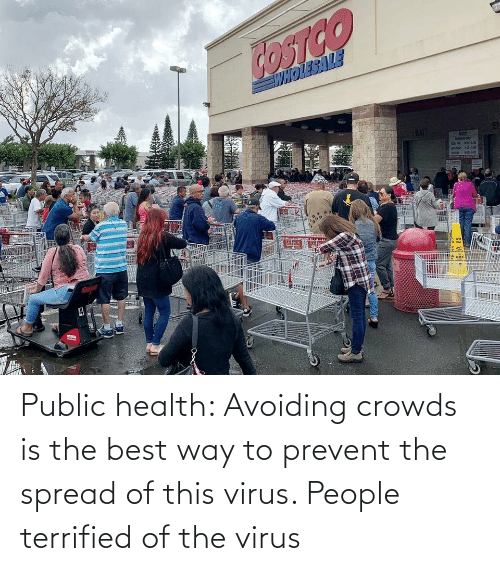 Prevent: Public health: Avoiding crowds is the best way to prevent the spread of this virus. People terrified of the virus