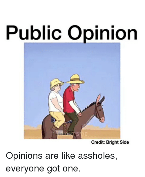 Memes, Asshole, and 🤖: Public opinion  Credit: Bright Side Opinions are like assholes, everyone got one.