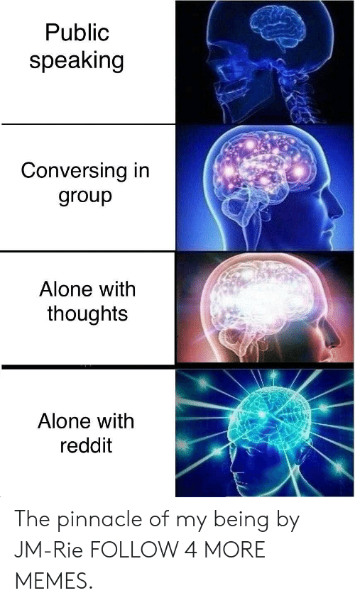 Pinnacle: Public  speaking  Conversing in  group  Alone with  thoughts  Alone with  reddit The pinnacle of my being by JM-Rie FOLLOW 4 MORE MEMES.