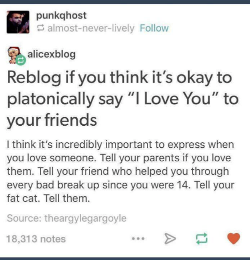 Bad, Friends, and Funny: punkqhost  almost-never-lively Follow  alicexblog  Reblog if you think it's okay to  platonically say ''I Love You' to  your friends  I think it's incredibly important to express when  you love someone. Tell your parents if you love  them. Tell your friend who helped you through  every bad break up since you were 14. Tell your  fat cat. Tell them.  Source: theargylegargoyle  18,313 notes