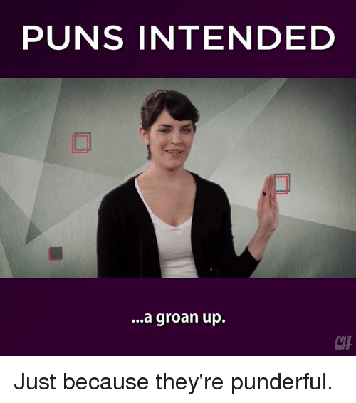 🅱 25 Best Memes About Puns Intended