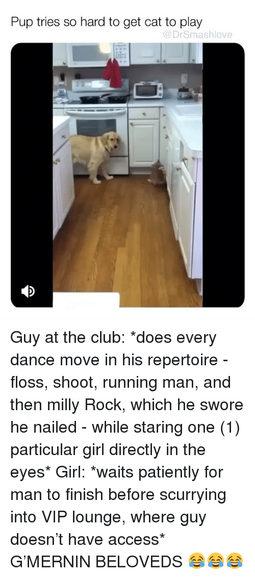 Club, Memes, and Milly Rock: Pup tries so hard to get cat to play  @DrSmashlove Guy at the club: *does every dance move in his repertoire - floss, shoot, running man, and then milly Rock, which he swore he nailed - while staring one (1) particular girl directly in the eyes* Girl: *waits patiently for man to finish before scurrying into VIP lounge, where guy doesn't have access* G'MERNIN BELOVEDS 😂😂😂