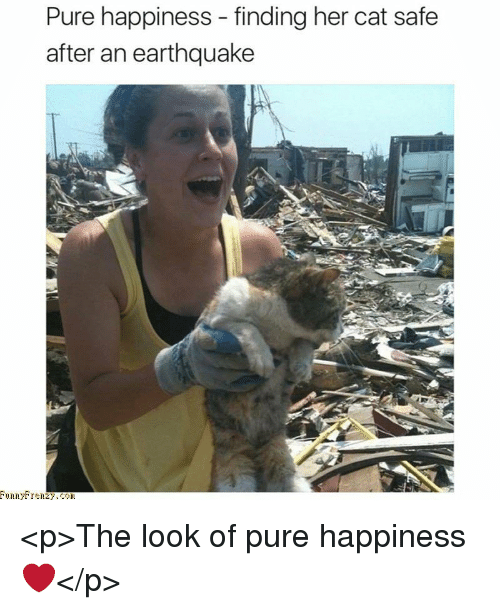 Pure Happiness: Pure happiness - finding her cat safe  after an earthquake <p>The look of pure happiness ❤</p>