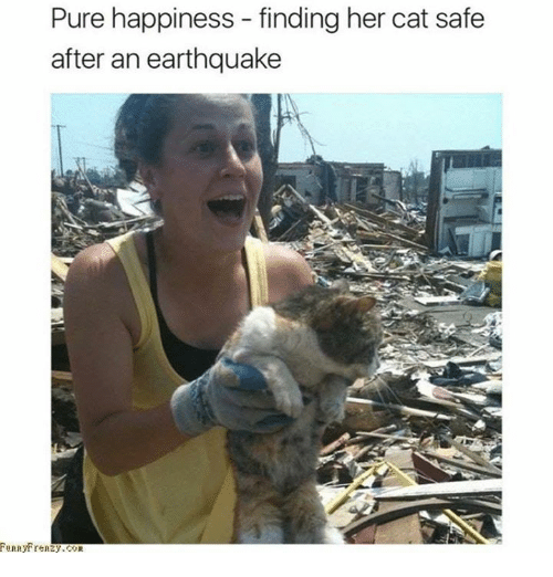 Pure Happiness: Pure happiness - finding her cat safe  after an earthquake  unnytrenzy.COR