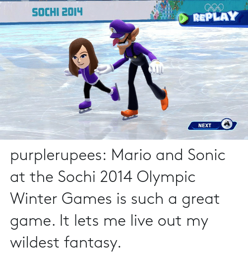 Sonic: purplerupees: Mario and Sonic at the Sochi 2014 Olympic Winter  Games is such a great game. It lets me live out my wildest fantasy.