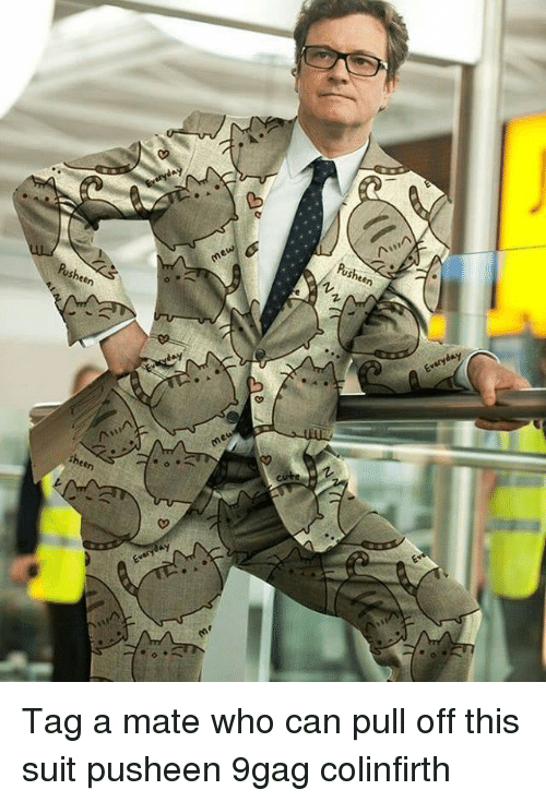 9gag, Memes, and 🤖: Pusheen  Pusheen  me  sheen  Z. Tag a mate who can pull off this suit pusheen 9gag colinfirth