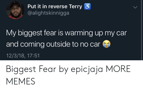 warming-up: Put it in reverse Terry  @alightskinnigga  My biggest fear is warming up my car  and coming outside to no car  12/3/18, 17:51 Biggest Fear by epicjaja MORE MEMES