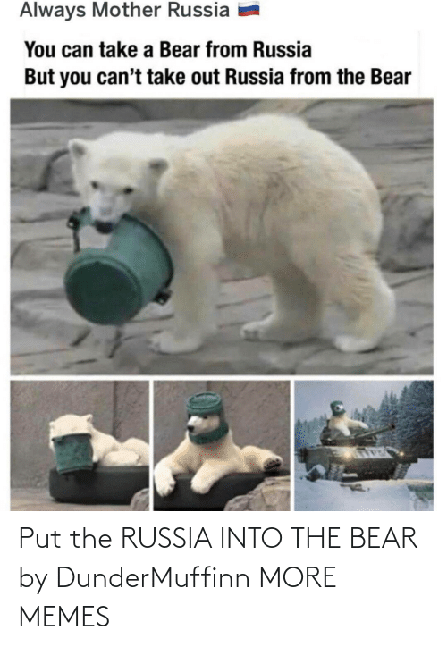 Bear: Put the RUSSIA INTO THE BEAR by DunderMuffinn MORE MEMES