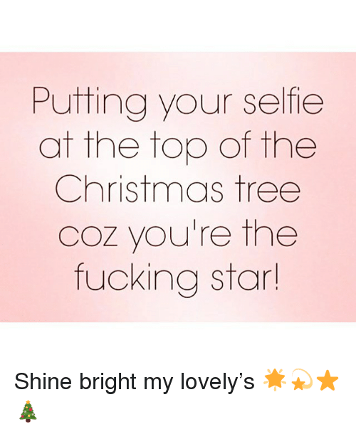 shine bright: Putting your selfie  at the top of the  Christmas tree  Coz you're the  fucking star Shine bright my lovely's 🌟💫⭐️ 🎄