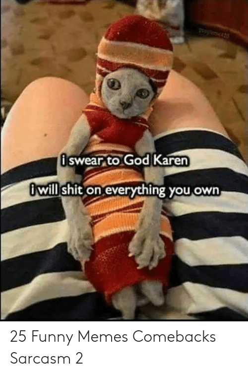 Funny, God, and Memes: pylet  üswear to God Karen  Owill shit on everything you own 25 Funny Memes Comebacks Sarcasm 2
