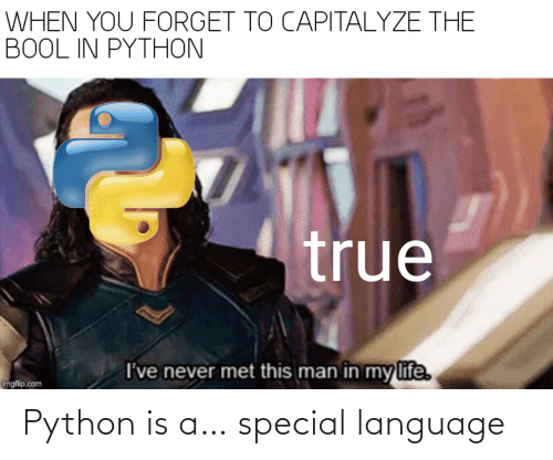 python: Python is a… special language