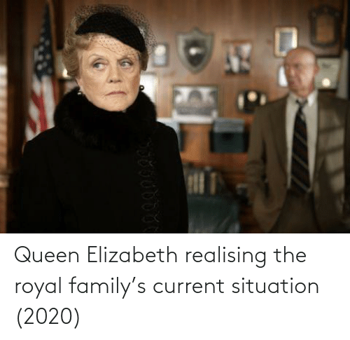 Royal family: Queen Elizabeth realising the royal family's current situation (2020)