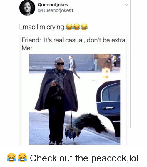 Casuals: Queenofjokes  @Queenofjokes1  Lmao I'm crying  Friend: It's real casual, don't be extra  Me: 😂😂 Check out the peacock,lol
