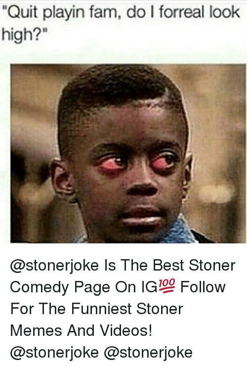 "Fam, Memes, and Videos: ""Quit playin fam, do I forreal look  high?"" @stonerjoke Is The Best Stoner Comedy Page On IG💯 Follow For The Funniest Stoner Memes And Videos! @stonerjoke @stonerjoke"