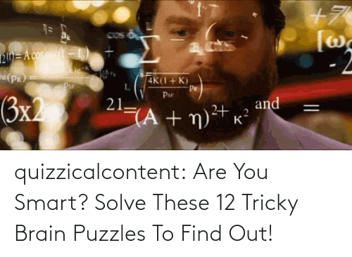 brady: quizzicalcontent:    Are You Smart? Solve These 12 Tricky Brain Puzzles To Find Out!