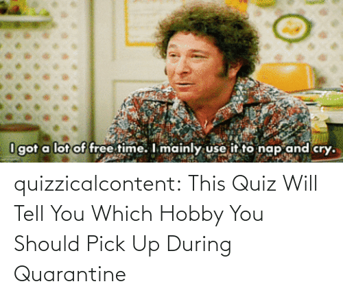 brady: quizzicalcontent:    This Quiz Will Tell You Which Hobby You Should Pick Up During Quarantine