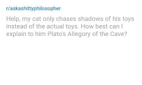 the cave: r/askashittyphilosopher  Help, my cat only chases shadows of his toys  instead of the actual toys. How best can l  explain to him Plato's Allegory of the Cave?