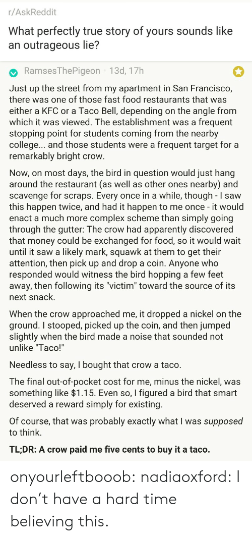 "Restaurants: r/AskReddit  What perfectly true story of yours sounds like  an outrageous lie?   RamsesThePigeon 13d, 17h  Just up the street from my apartment in San Francisco,  there was one of those fast food restaurants that was  either a KFC or a Taco Bell, depending on the angle from  which it was viewed. The establishment was a frequent  stopping point for students coming from the nearby  college... and those students were a frequent target for a  remarkably bright crow  Now, on most days, the bird in question would just hang  around the restaurant (as well as other ones nearby) and  scavenge for scraps. Every once in a while, though - I saw  this happen twice, and had it happen to me once - it would  enact a much more complex scheme than simply going  through the gutter: The crow had apparently discovered  that money could be exchanged for food, so it would wait  until it saw a likely mark, squawk at them to get their  attention, then pick up and drop a coin. Anyone who  responded would witness the bird hopping a few feet  away, then following its ""victim"" toward the source of its  next snack.  When the crow approached me, it dropped a nickel on the  ground. I stooped, picked up the coin, and then jumped  slightly when the bird made a noise that sounded not  unlike ""Taco!'  Needless to say, I bought that crow a taco.  The final out-of-pocket cost for me, minus the nickel, was  something like >l.T5. Even so, I figured a bird that smart  deserved a reward simply for existing  Of course, that was probably exactly what I was supposed  to think.  TL;DR: A crow paid me five cents to buy it a taco. onyourleftbooob:  nadiaoxford: I don't have a hard time believing this."
