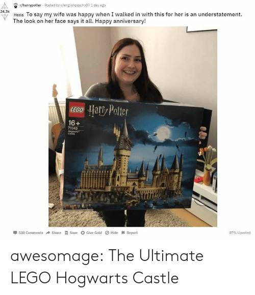 harrypotter: r/harrypotter Posted by u/englishpsycho87 1 day ago  24.3k  u Media To say my wife was happy when I walked in with this for her is an understatement.  The look on her face says it all. Happy anniversary!  16+  71043  Cestie  530 ComShareSave Give Gold Hide Report  87% Upvoted awesomage:  The Ultimate LEGO Hogwarts Castle