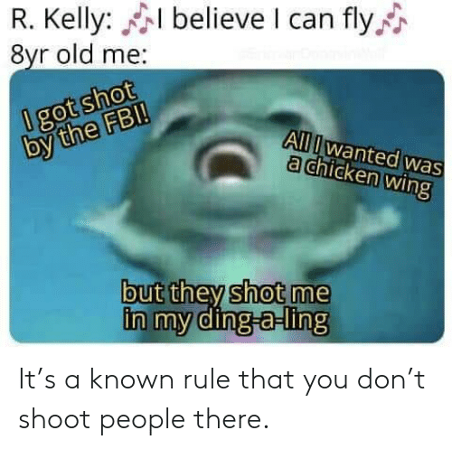 R. Kelly, Chicken, and Old: R. Kelly: believe I can fly  8yr old me:  0 got shot  by the FB!  All Iwanted was  a chicken wing  but they shot me  in my ding-a-ling It's a known rule that you don't shoot people there.
