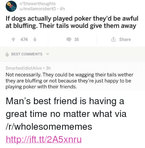 "Not Necessarily: r/Showerthoughts  u/mellamoroberto 4h  If dogs actually played poker they'd be awful  at bluffing. Their tails would give them away  474  16  Share  BEST COMMENTS  SmartestldiotAlive 3h  Not necessarily. They could be wagging their tails wether  they are bluffing or not because they're just happy to be  playing poker with their friends. <p>Man's best friend is having a great time no matter what via /r/wholesomememes <a href=""http://ift.tt/2A5xnru"">http://ift.tt/2A5xnru</a></p>"