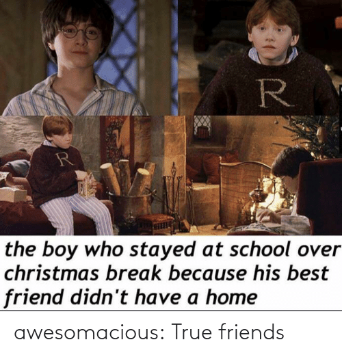 At School: R  the boy who stayed at school over  christmas break because his best  friend didn't have a home awesomacious:  True friends