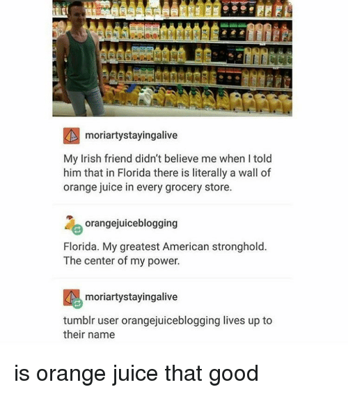 Tumblr, Stronghold, and Orange Juice: RA moriartystayingalive  My Irish friend didn't believe me when I told  him that in Florida there is literally a wall of  orange juice in every grocery store.  orangejuiceblogging  Florida. My greatest American stronghold.  The center of my power.  moriartystayingalive  tumblr user orangejuiceblogging lives up to  their name is orange juice that good
