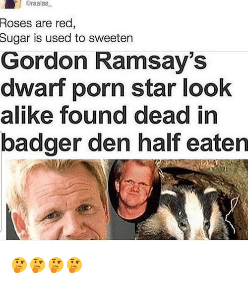 Memes, Porn, and Star: @raalaa  Roses are red  Sugar  is used to sweeten  Gordon Ramsay's  dwarf porn star look  alike found dead in  badger den half eaten 🤔🤔🤔🤔