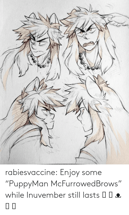 "While: rabiesvaccine:  Enjoy some ""PuppyMan McFurrowedBrows"" while Inuvember still lasts ˵ ಠ ᴥ ಠ ˵"