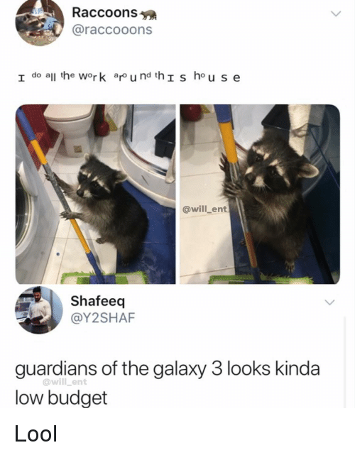 Memes, Work, and Budget: Raccoons  @raccooons  I do all he work ar u nd thIs hou se  @will_ent  Shafeeq  @Y2SHAF  guardians of the galaxy 3 looks kinda  low budget  @will _ent Lool