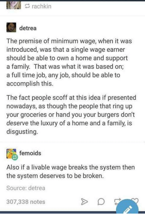 Family, Funny, and Tumblr: rachkin  detrea  The premise of minimum wage, when it was  introduced, was that a single wage earner  should be able to own a home and support  a family. That was what it was based on;  a full time job, any job, should be able to  accomplish this.  The fact people scoff at this idea if presented  nowadays, as though the people that ring up  your groceries or hand you your burgers dont  deserve the luxury of a home and a family, is  disgusting.  femoids  Also if a livable wage breaks the system then  the system deserves to be broken  Source: detrea  307,338 notes