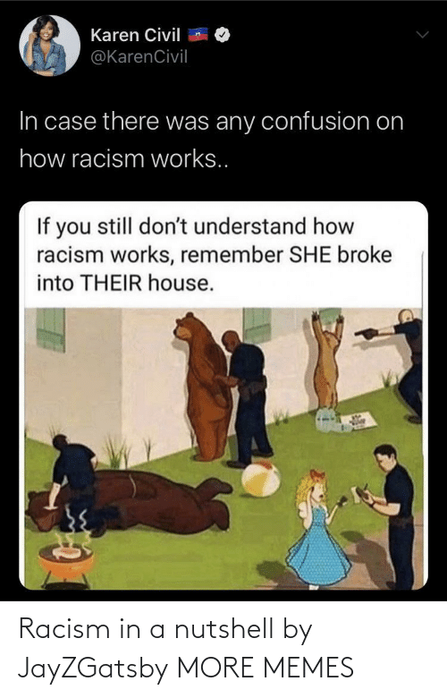 Racism: Racism in a nutshell by JayZGatsby MORE MEMES